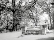 The North-West corner of Pillar Hall gardens.